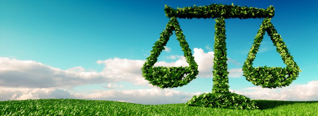 Equilibrium – Delivering Net Zero and Sustainable Business Growth