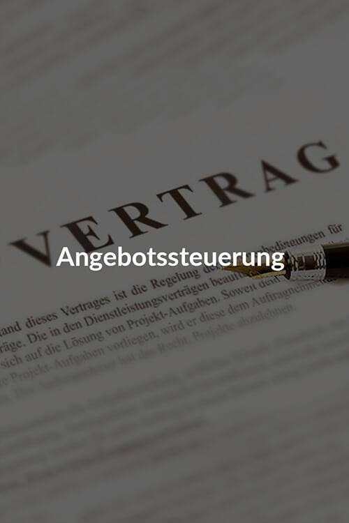 angebotsseuerung-new